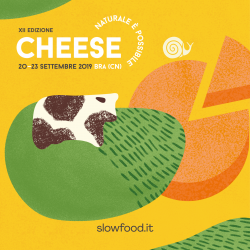 IT_Cheese_Yellow_social